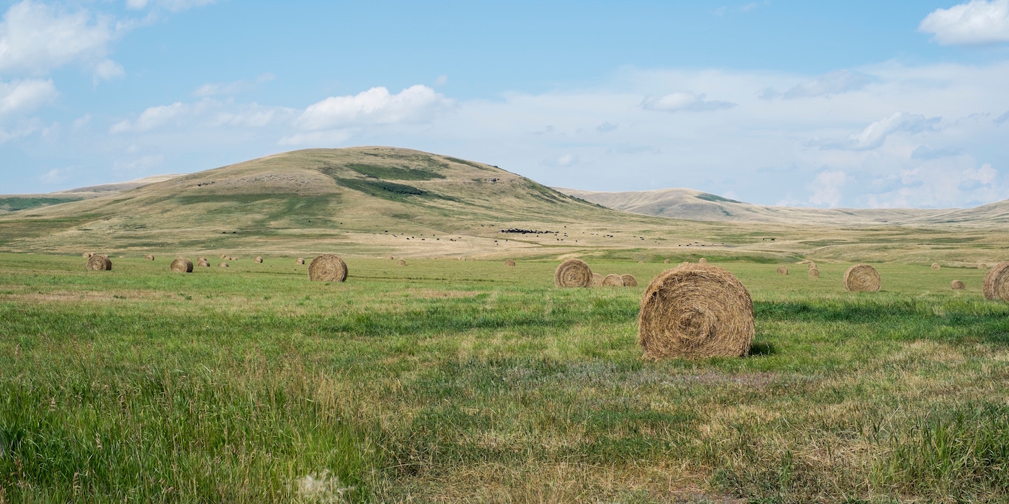 Hay bails with rolling hills